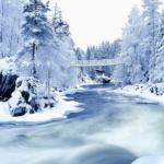 暖冬が温暖化に与える影響と、インフルエンザ発生の関係について