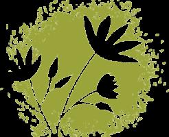 s_leaf0140