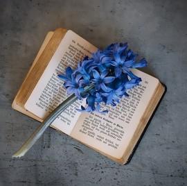 book-1357376_640