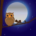 月を詠んだ和歌で有名な作品を5つご紹介。